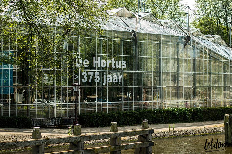 city trip a amsterdam